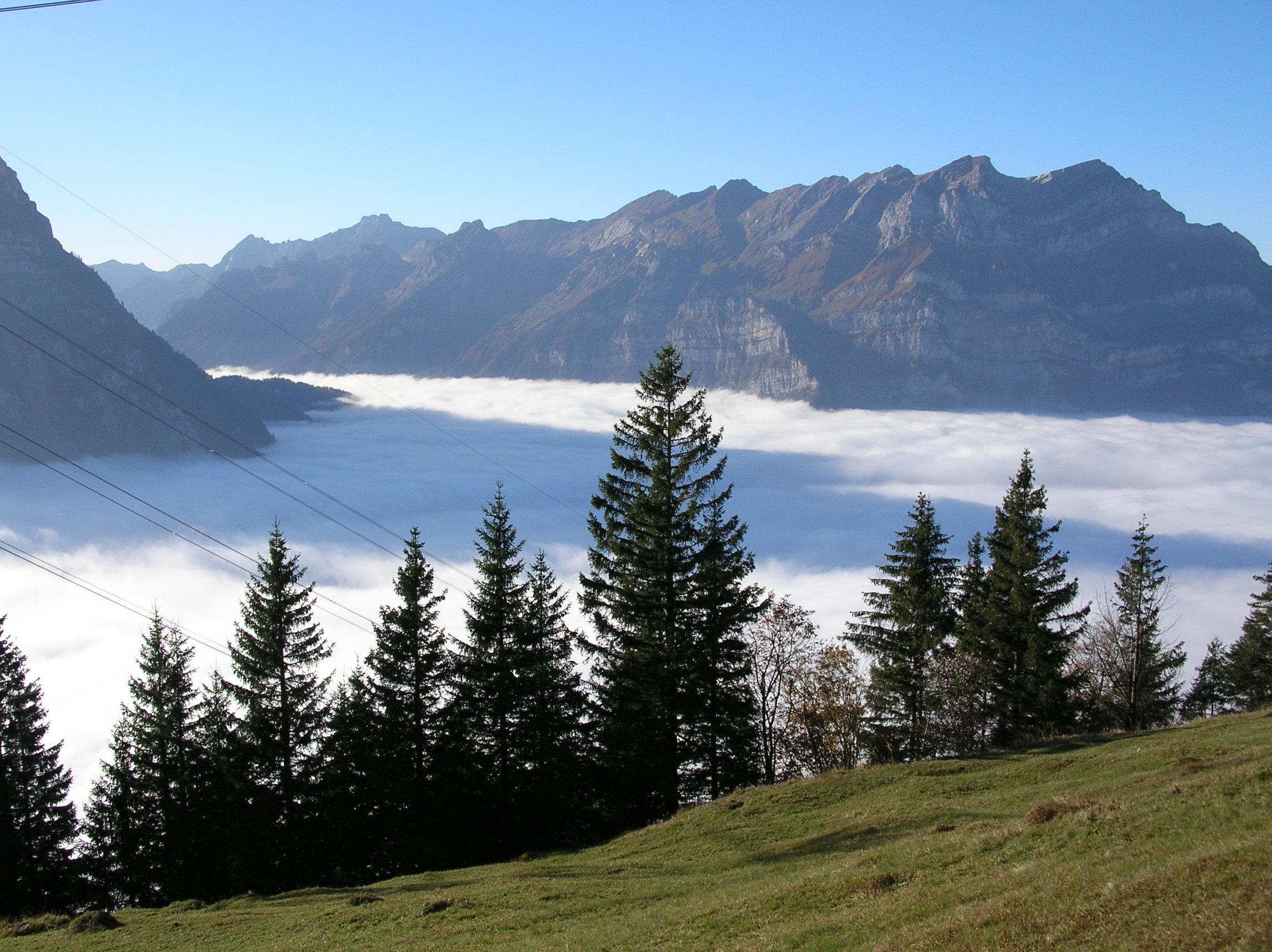 Wiggis-mit-Nebelmeer