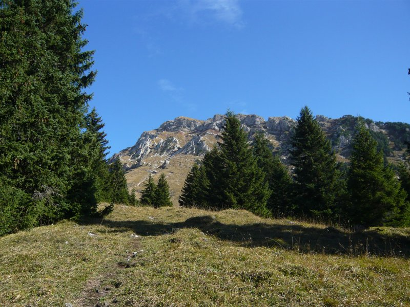 Blick Richtung Hächlenstock oberhalb Wildhüterhütte